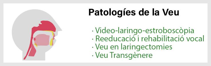 Patologies de la veu